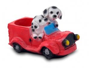 Далматинцы в машине