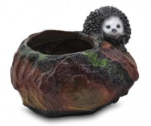 Ёж на камне