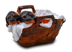 Щенки ротвейлера в корзине